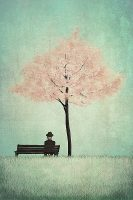 The Cherry Tree by Majali Image/poster design © Image Conscious all rights reserved.